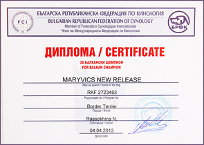 Чемпион Сербии - Maryvics New Release